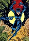 Wildcat_Yolanda_Montez_001.jpg