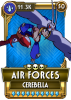 CB air forces.png