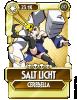 SGM - Salt Licht.png