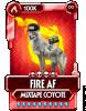 mixtape coyote custom card.png