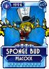 Sponge Budr.png